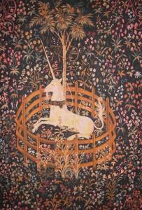 Harry Potter Vorhang Einhorn gefangen Garten W2022