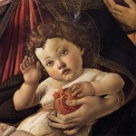 Granatapfel Botticelli