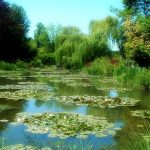 Monets_Garten_in_Giverny_nympheas